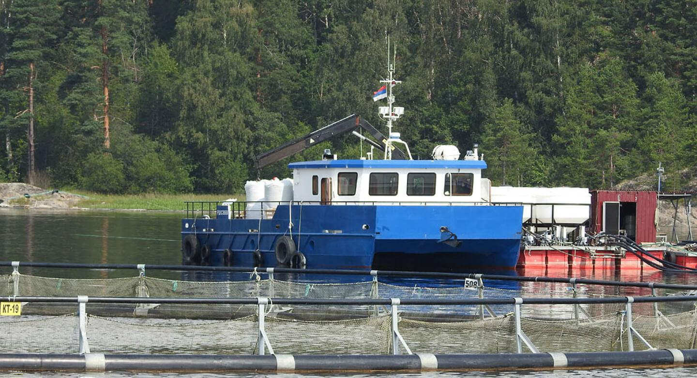 Постройка современного судна